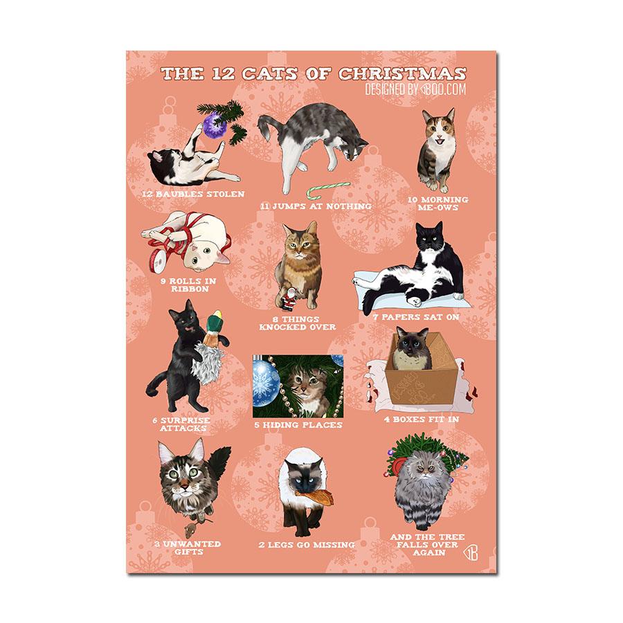12 cats