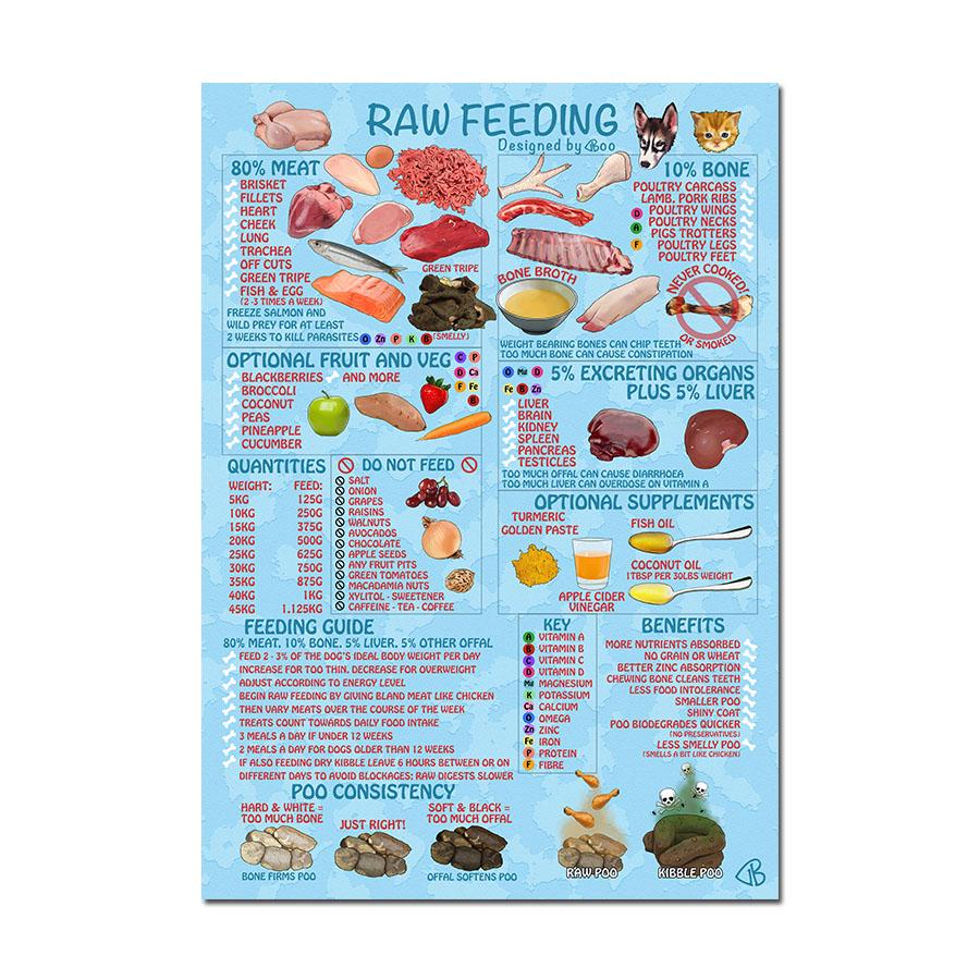 raw feeding poster