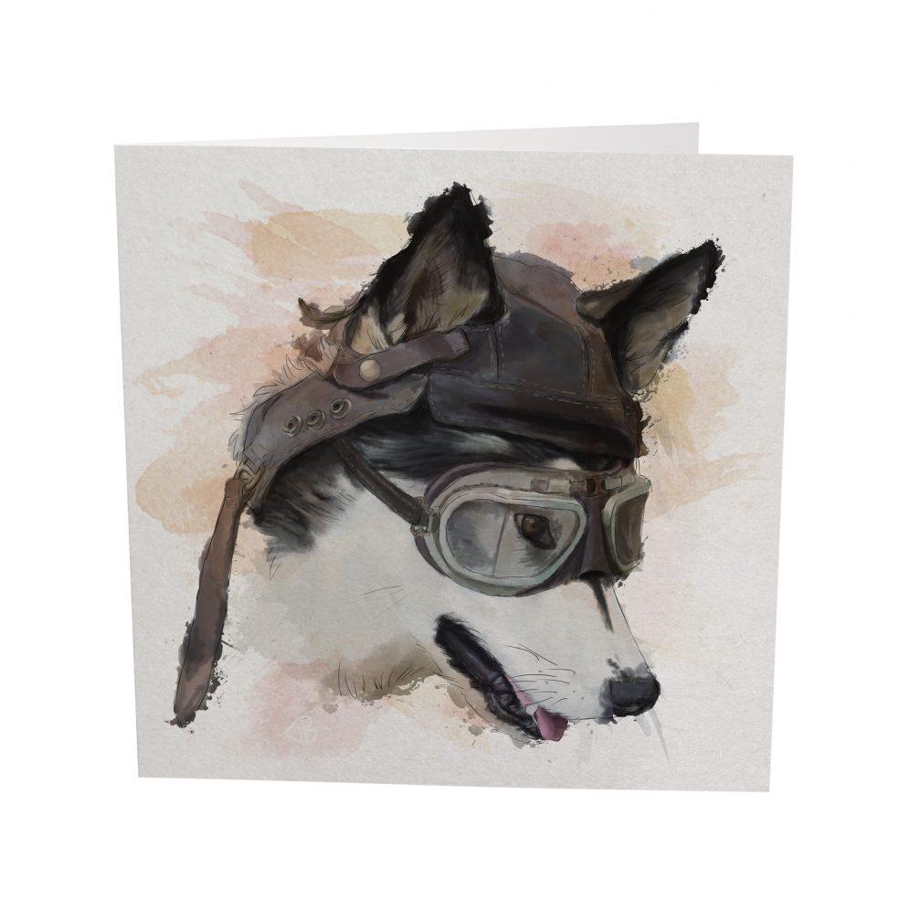 husky pilot