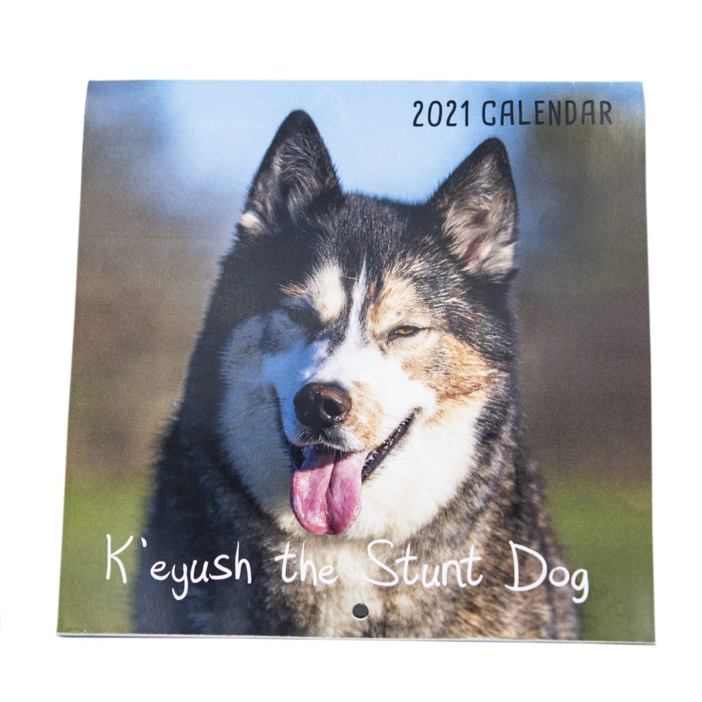 2021 A4 Husky Calendar – K'eyush The Stunt Dog