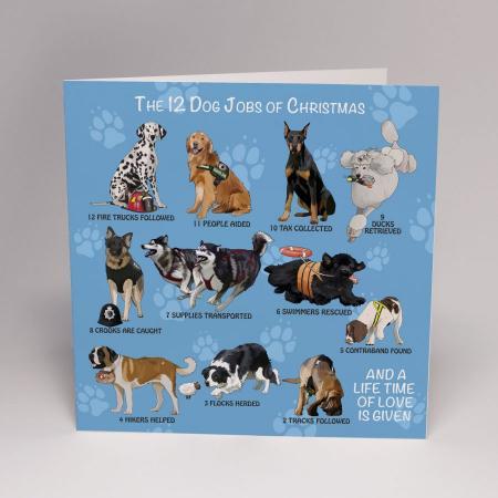 12 dog jobs