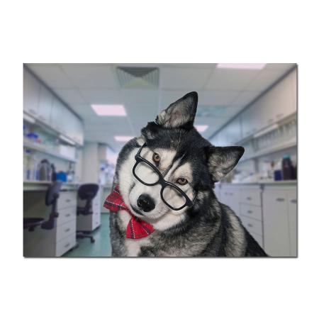 clever husky geek glasses